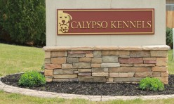 """Welcome to Calypso """"The best care for your best friend"""""""