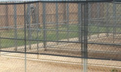 Outside Of The Giant Kennels