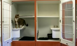 Our spacious and comfortable cattery